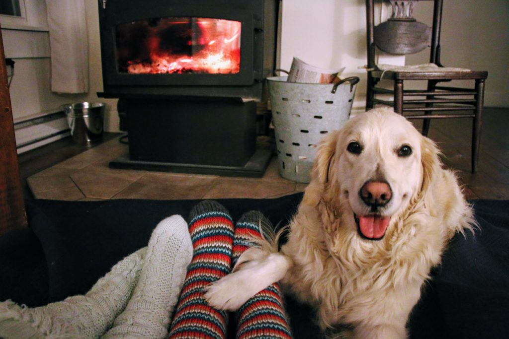 Resting by the fire with our dog Lily in captain's house cottage